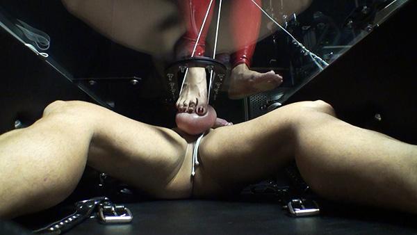 Footdom Balls Torture
